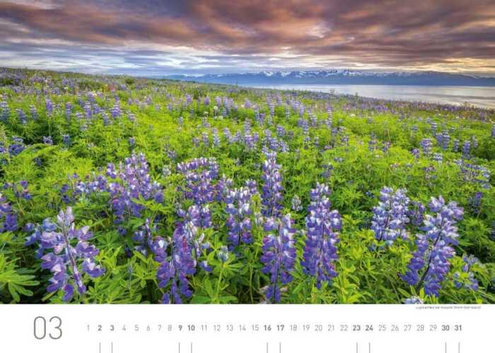 Kalenderblatt März 2019 Island