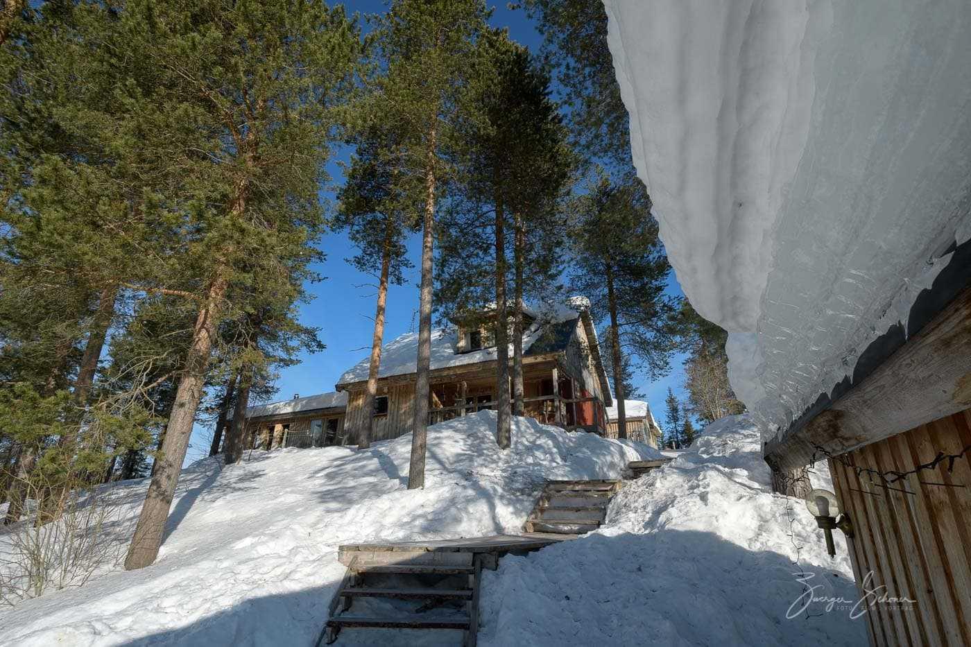 Snowtrail Dogcamp Lotti Meier