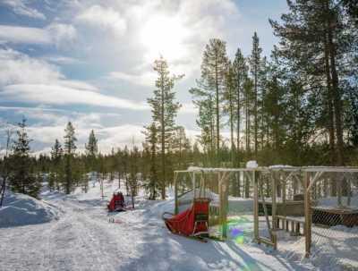 Snowtrail Dogcamp