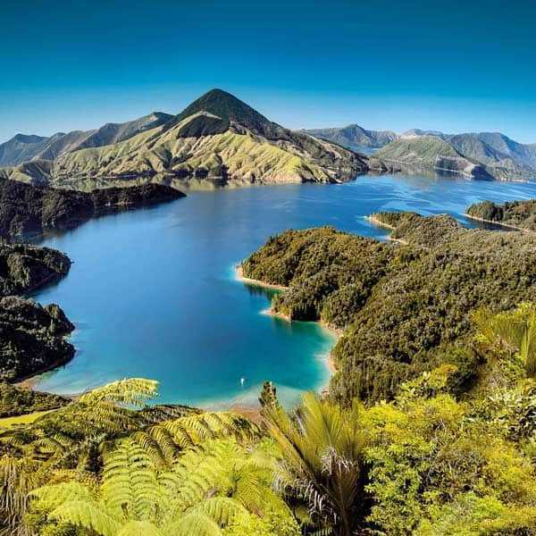 Marlborough Sounds Neuseeland